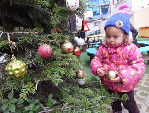 Коледна елхичка в двора